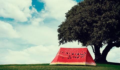 fieldcandyのテントスイカ