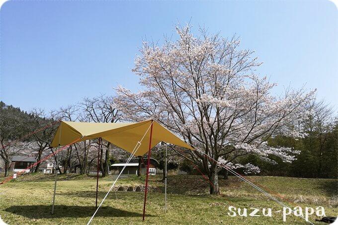 桜とタトンカ