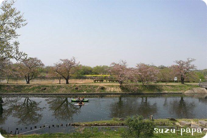 福岡堰でカヤック