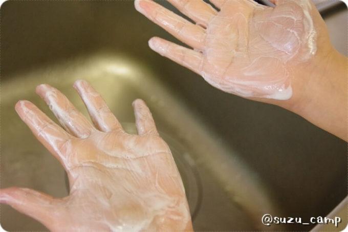 ハイランダーソトマリ 手洗い