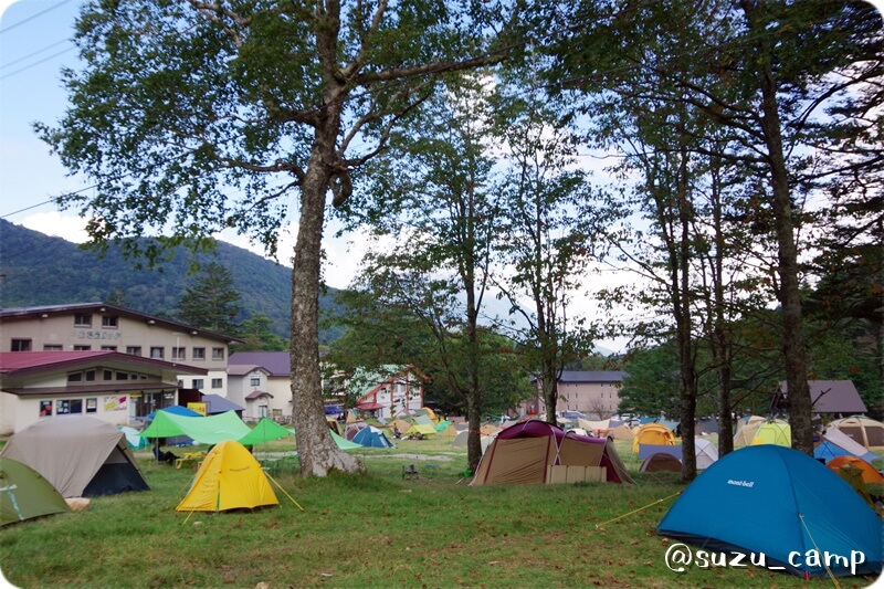 湯元キャンプ場 林間